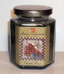 exquisite fine home interiors candles home interiors candles home