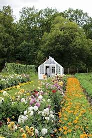 10 best cut flower garden book images on pinterest cut flowers