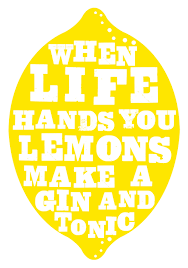 vodka tonic lemon when life hands you lemons make gin and tonics i u0027d prefer