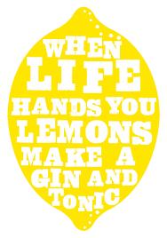 vodka tonic lemon when life hands you lemons make gin and tonics i u0027d prefer
