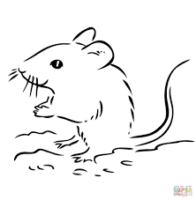 deer mouse coloring page kids drawing and coloring pages marisa