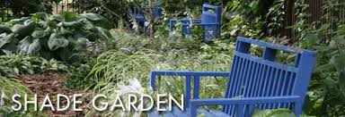 shade garden olbrich botanical gardens