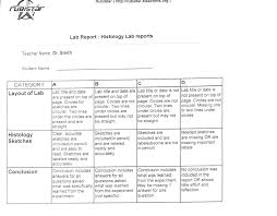 Cranial Nerves Worksheet Nutley Public District