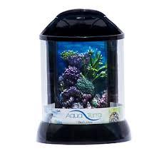 fish u0026 aquariums