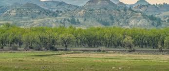 Rugged Landscape Deep In The Powder River Valley Montana Wilderness Association