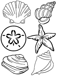 seashell coloring pages getcoloringpages com