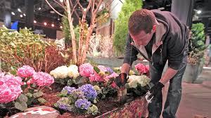 boston flowers rutland nurseries exhibit at boston flower show featured in boston