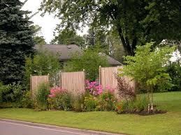 Privacy Garden Ideas Trees For Privacy In Small Yard Landscape Privacy Ideas Small