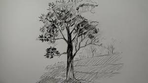 pencil sketch of tree drawing pencil