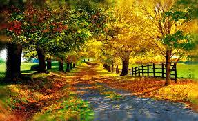 imagenes de otoño para fondo de escritorio fondo escritorio bonito paisaje otoño