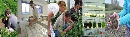 chambre d agriculture d auvergne dispositifs expérimentaux chambres d agriculture d auvergne rhône