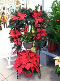 home depot black friday poinsettias 29 best home depot displays images on pinterest home depot