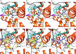 demethylase inhibitor fungicide resistance in p