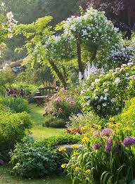 Pics Of Backyard Landscaping by Best 25 Cottage Gardens Ideas On Pinterest Lupine Flowers