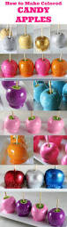 candy apples for halloween 25 best candy apples recipe ideas on pinterest apple candy