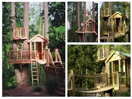 I Have Built A Treehouse - treehouse u2013 home is what you make it