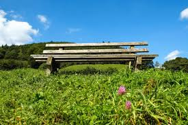 Field Bench Free Picture Grass Meadow Bench Field Nature Landscape Outdoor