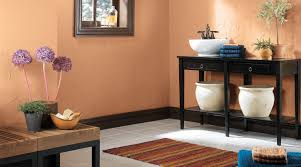 What Color Goes With Orange Walls Inspiring Paint Colours For Interior Ideas Penaime