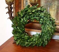 preserved boxwood wreath preserved garden boxwood wreath 14 home kitchen