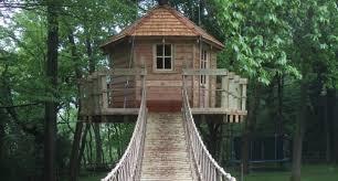 how to build a treehouse paul cameron pulse linkedin