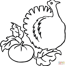 pumpkin and turkey coloring page free printable coloring pages