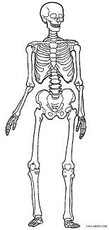 Human Skeleton Coloring Page printable skeleton coloring pages for cool2bkids stitch it