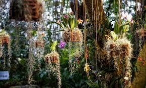 Ohio Botanical Gardens Botanical Gardens Cleveland Ohio Hours Best Idea Garden