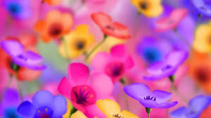images for gt cute live wallpapers android phones free wallpaper