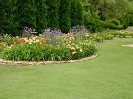garden photo day 06 01 2012 07 01 2012