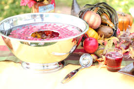 punch recipes for thanksgiving sparkling spiced cranberry punch with cranberry ice ring toni