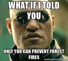 Only You Can Prevent Forest Fires Meme - only you can prevent forest fires full mafiascum net