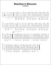devon u0027s banjo homeplace banjo u003e guitar