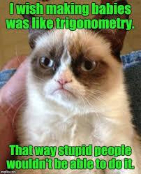 Mega Meme - elegant mega meme dump of the year pt4 imgur wallpaper site