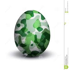 camouflage easter eggs camouflage on egg stock illustration image of hunger 6912462