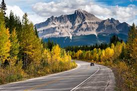 most scenic roads in usa drive by beauty 10 of canada s most scenic drives