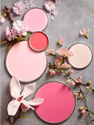 Sophisticated Pink Paint Colors 43 Best What U0027s Your Paint Personality Images On Pinterest