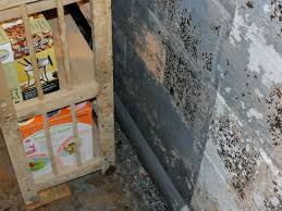 basement wall waterproofing paint 5230