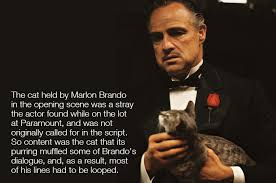 Godfather Meme - the godfather 1972 trivia album on imgur