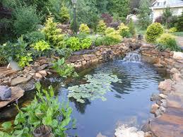 water pond design back yard koi pond designs koi pond waterfall