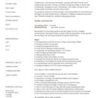 Personal Skills For Resume Examples by Efficient Resume Example For Bookkeeper Job Featuring Professional
