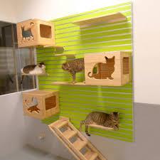 Cat Wall Furniture Modular Cat Wall Set Woozi