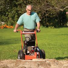 stump grinder rental near me stump grinder reconditioned 6 hp subaru manual start dr power