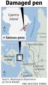 Map Oregon Washington State Stock by Please Go Fishing Washington State Says After Farmed Atlantic