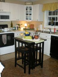 Kitchen Cabinet Cleaners Granite Countertop What Color Is Best For Kitchen Cabinets How