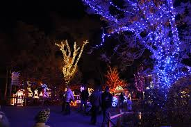 zoo lights at hogle zoo here and there boo lights a zoo visit without animals