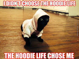 Hoodie Meme - sandi pointe virtual library of collections