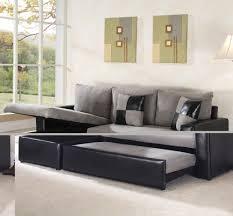 Sofa Sectional Sleepers Furniture Sectional Sleeper Sofas Best Of Sofa Design Wonderful L