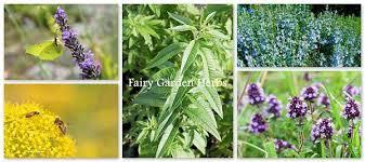 how to create an enchanting outdoor fairy garden