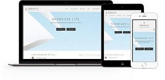 Lite by Showcase Lite Drupal Org