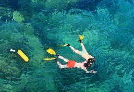California snorkeling images Honolulu california tour blog jpg